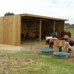 Les abris pour les chevaux qui sont au pré.