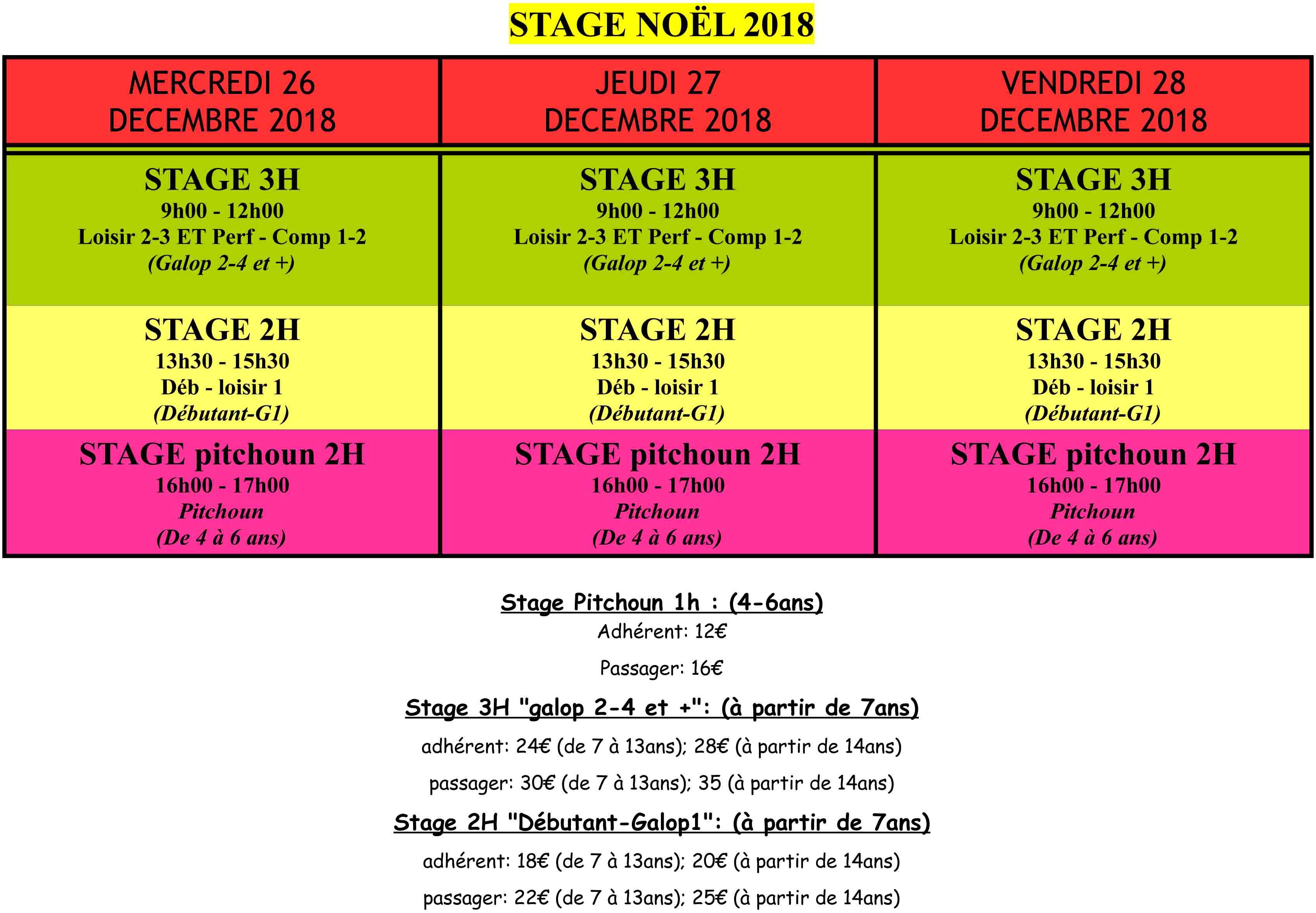 Les tarifs des stages pendant les vacances de Noël au centre équestre du Bosquet, près de Châtellerault.